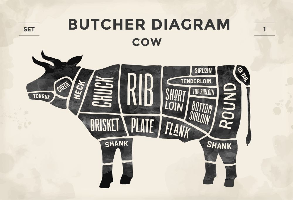 Butcher's Cuts of Meat Cow Diagram
